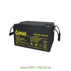 AC QUY LONG 12V-65AH, WP65-12N